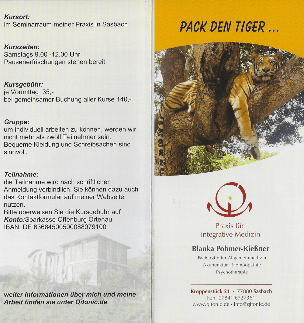 Flyer: Pack den Tiger in den Tank - Seite 1